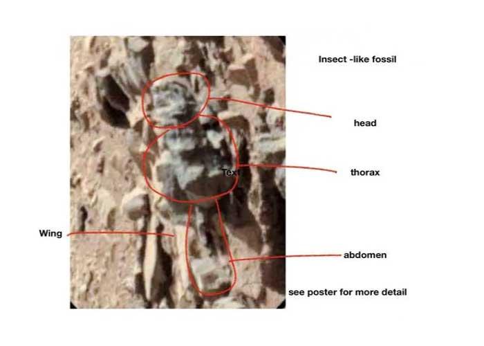 मंगल ग्रह पर मिली Dead Body