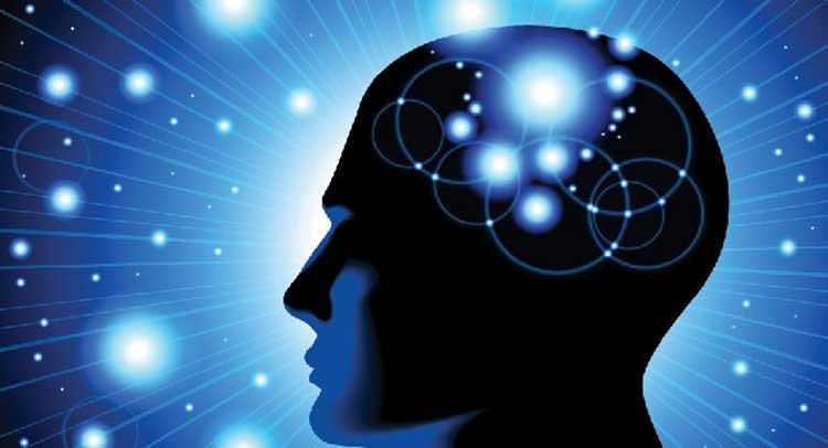पुरुषों की तुलना में 10% छोटा है महिलाओं का दिमाग