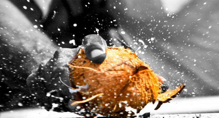 जानिए, हिन्दू धर्म में नये काम से पहले क्यों फोड़ा जाता है नारियल?