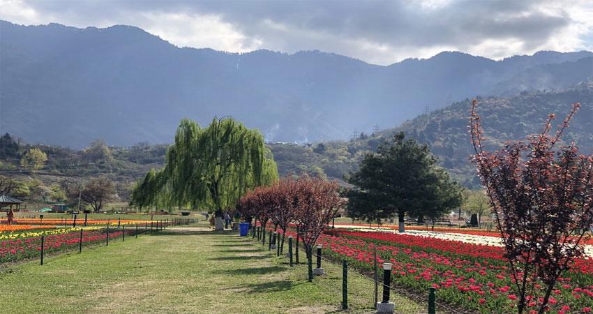 मध्यरात्रि से जम्मू-कश्मीर और लद्दाख बने दो केन्द्रशासित प्रदेश, हुआ एक देश एक कानून लागू