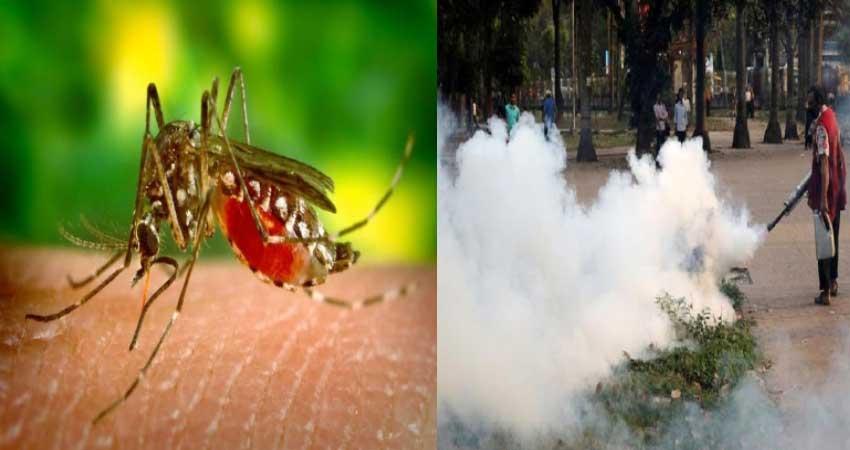 वर्ष के अंत तक डेंगू के मामलों में आ सकती है तेजी