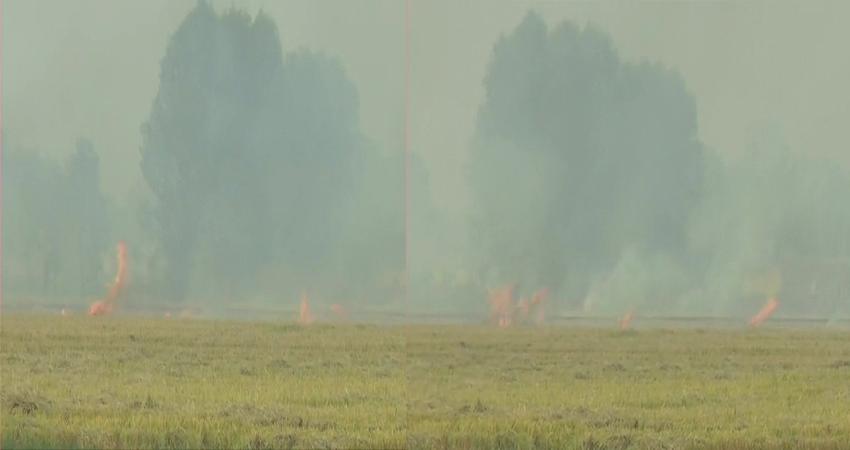 SC की फटकार ने बाद भी कोई असर नहीं, पंजाब में अब भी उठ रहा पराली का धुआं