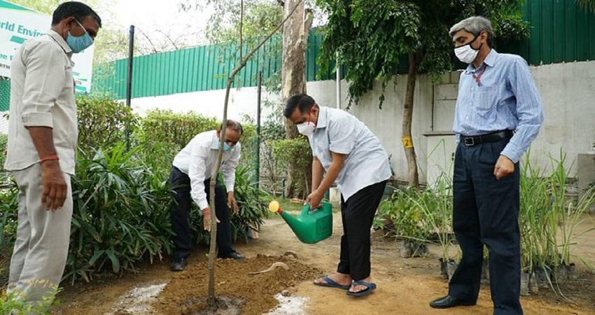 विश्व पर्यावरण दिवस के मौके पर CM केजरीवाल ने किया वृक्षारोपण, ली ये प्रतिज्ञा