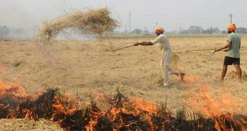 केंद्र सरकार पराली संकट के लिए ला रही स्थायी समाधान, किसानों के लिए बनेगी ये नीति