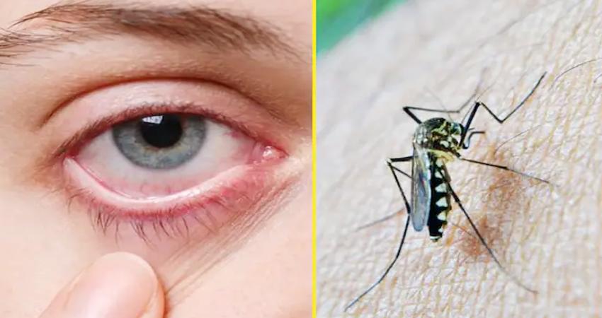 केरल में बढ़ा जीका वायरस का खतरा, 5 नए केस मिले, अब तक 28 लोग संक्रमित