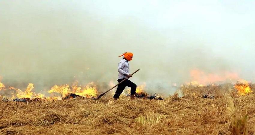 NASA सैटेलाइट की इमेज हैरान करने वाली! पंजाब-हरियाणा में जल रही बेतहाशा पराली