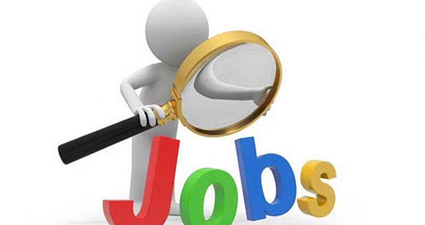 सरकारी नौकरी: 12 वीं पास के लिए निकली बंपर भर्तियां, ऐसे करें आवेदन