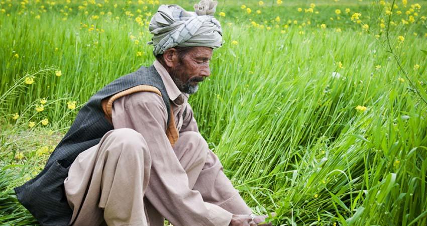 कृषि कानून : 'आत्मनिर्भर भारत' को बढ़ावा