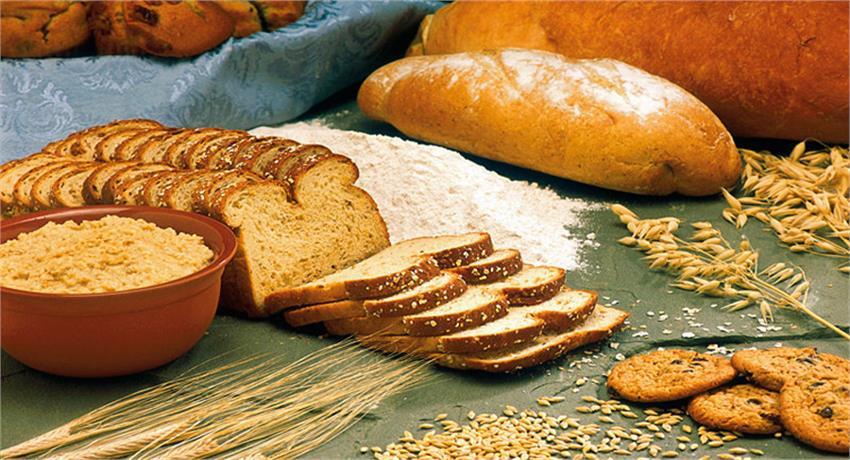 पढ़ें, ब्रेकफास्ट में Bread खाने के नुकसान, साथ ही जानें कौन सी ब्रेड होती है सेहत के लिए फायदेमंद