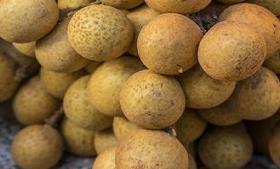 कोरोना से बचा सकता है बिहार का ये फल, इम्युनिटी बढ़ाने में है मददगार