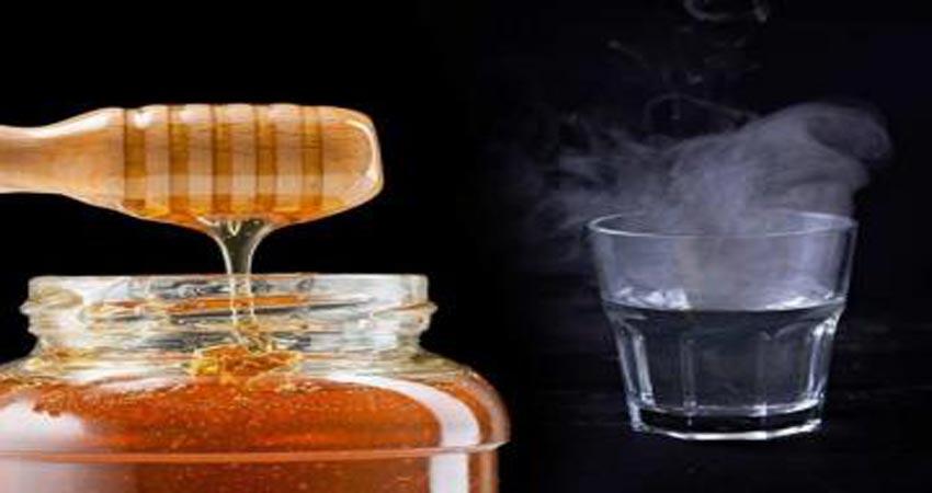 गर्म पानी में शहद मिलाकर पीने से शरीर को मिलते हैं ये फायदे