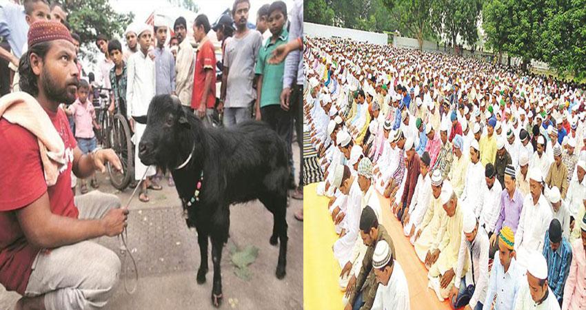 जब अकबर ने गाय की कुर्बानी पर दिया था सजा-ए-मौत का फरमान, पढ़ें पूरी कहानी