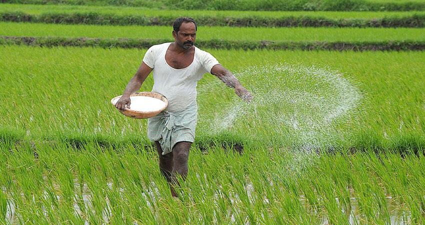 मोदी सरकार के फैसले से किसानों को कितना लाभ, जानें किस आधार पर तय किया जाता है MSP
