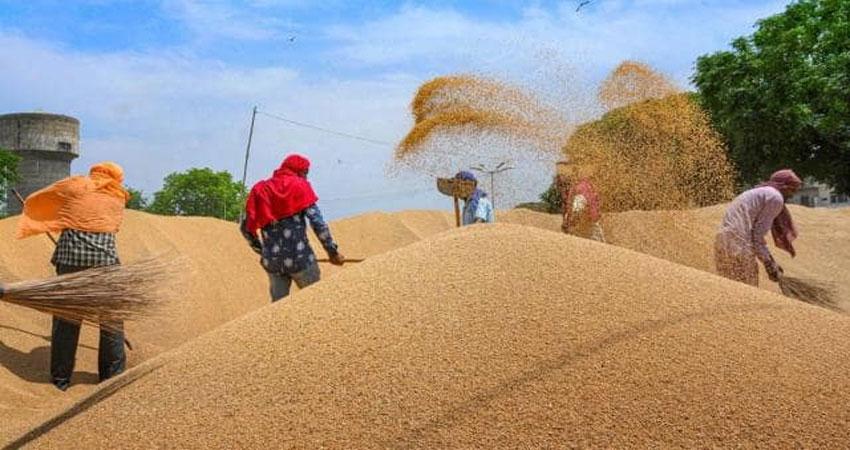 नाराज किसानों को मनाने में जुटी सरकार, रबी फसलों के बढ़ाए दाम