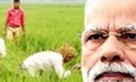 पीएम किसान योजना : इस वजह से नहीं मिली 2.69 लाख किसानों को पहली किस्त