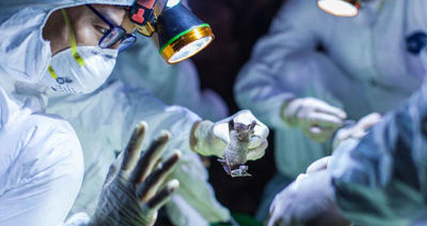 वैज्ञानिक का दावा- कोरोना महामारी की तीसरी लहर नवंबर में होगी चरम पर, अगर...