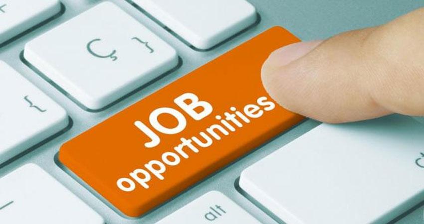 लोक सेवा आयोग में स्नातकों के लिए नौकरी का मौका