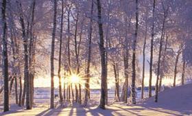 कम बजट में उठाए सर्दियों का लुत्फ, परिवार और दोस्तों के साथ देश में ले विदेश का मजा